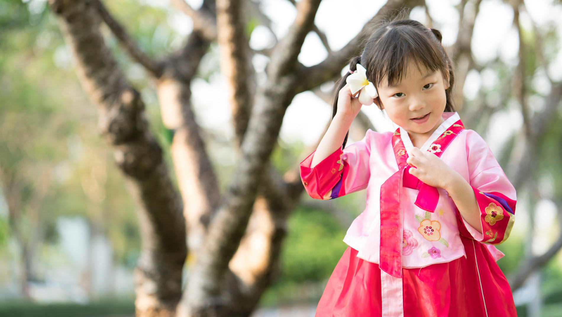 Korean Heritage Adoption Program